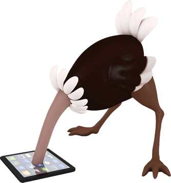 Ostrich burying its head in a tablet computer
